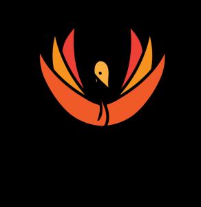Firebird North Sistema Project